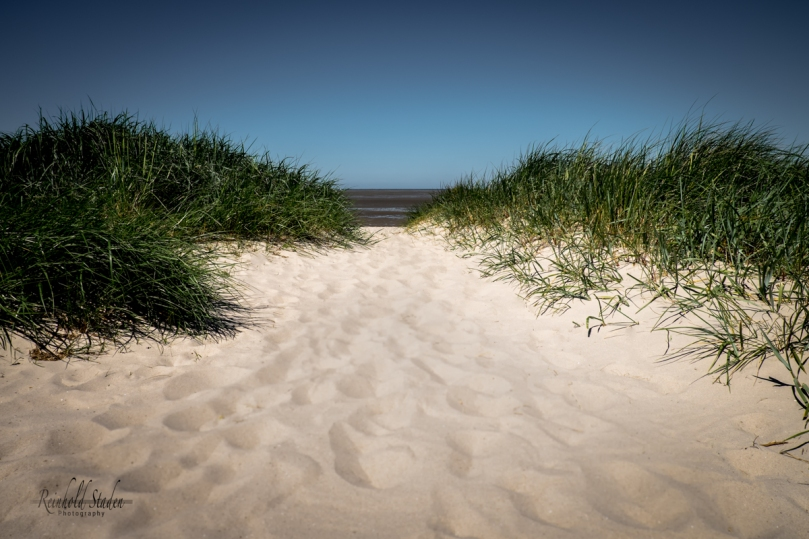 Close to the beach by Reinhold Staden
