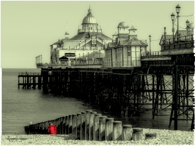 Eastbourne Pier before the fire in 2014 by Reinhold Staden