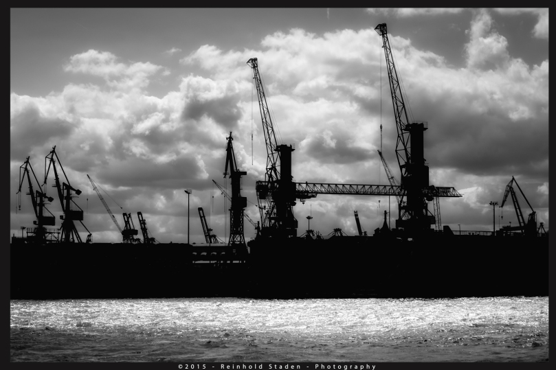 Port of Hamburg by Reinhold Staden