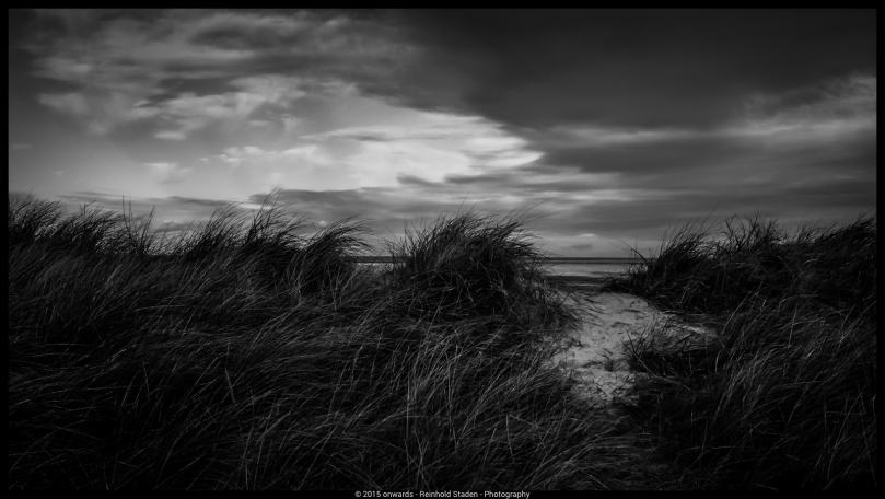 And the wind cries by Reinhold Staden