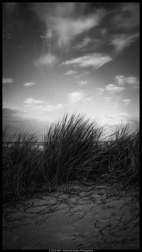 RSP - Reinhold Staden Photography - Reached the Shore