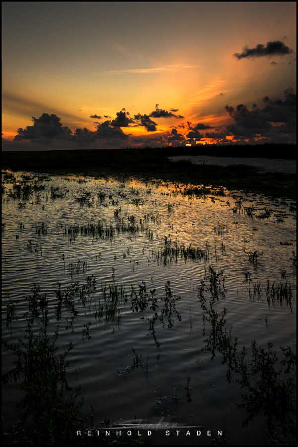 RSP - Reinhold Staden Photography - Pond by the Sea