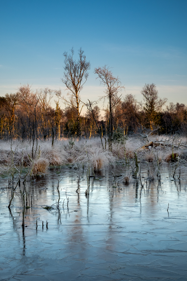 RSP - Reinhold Staden Photography - Dreaming: Frozen