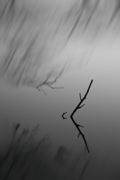 RSP - Reinhold Staden Photography - When the wind starts painting