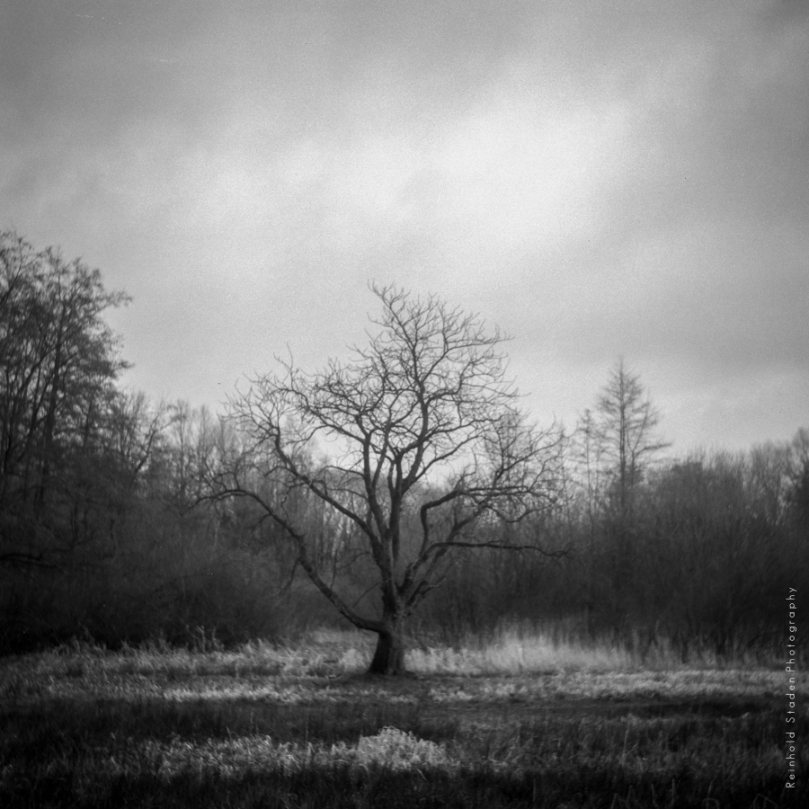 RSP - Reinhold Staden Photography - 6x6 film exposed
