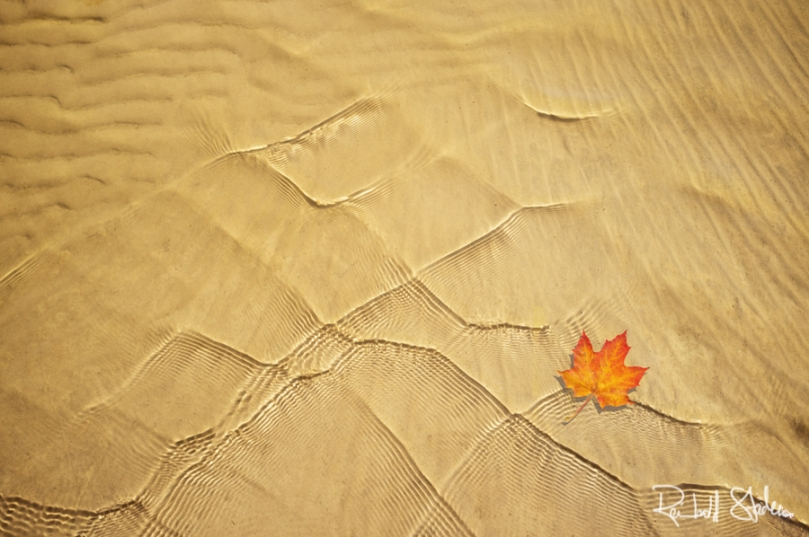 RSP - Reinhold Staden Photography - Lake meets Autumn