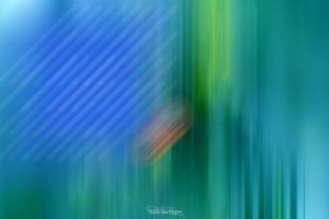 RSP - Reinhold Staden Photography - Abstracts